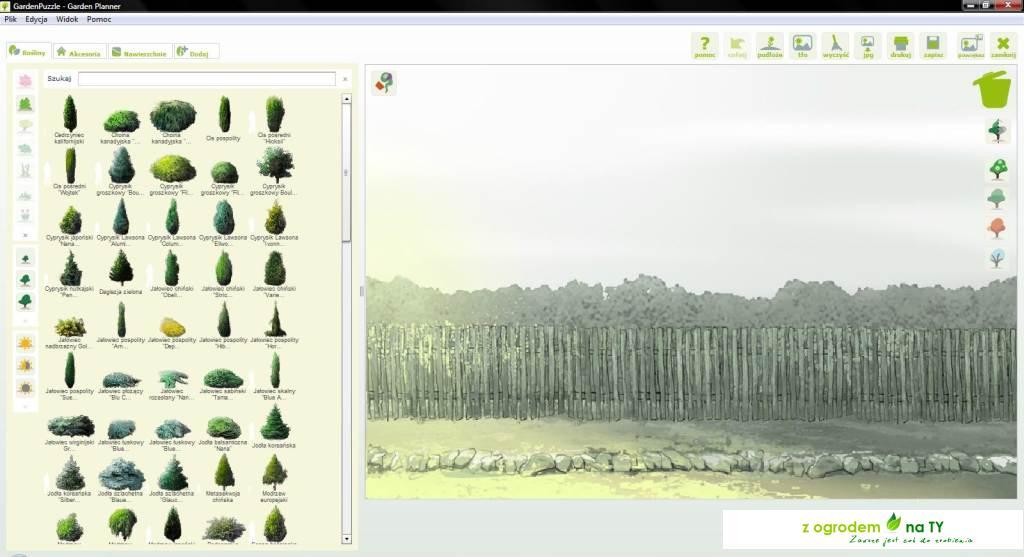 2Drzewa i krzewy iglaste
