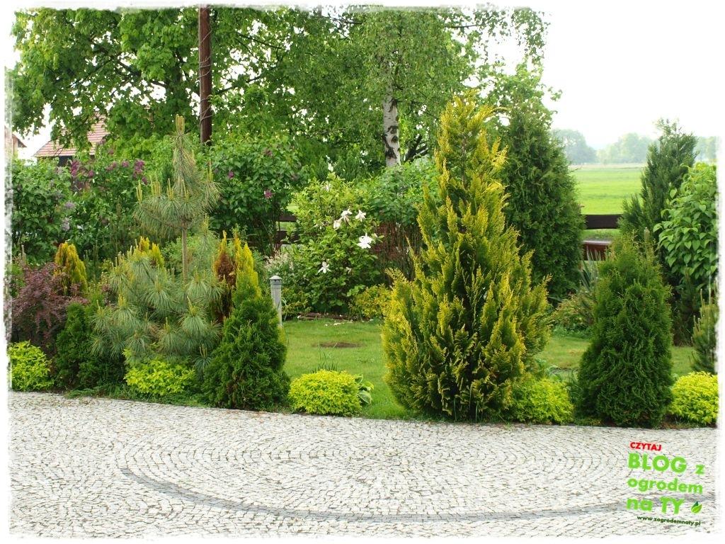 założenie ogrodu zogrodemnaty16