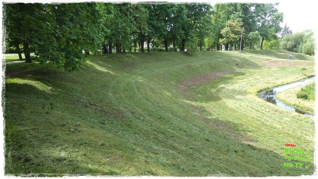 Park Miejski w Nysie zogrodemnaty29