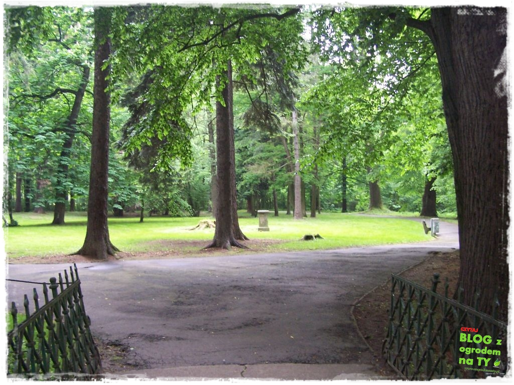 Park Miejski w Nysie zogrodemnaty30
