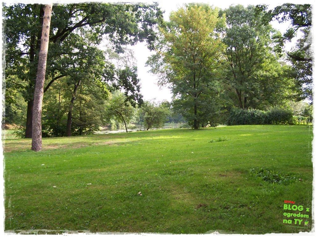Park Miejski w Nysie zogrodemnaty40