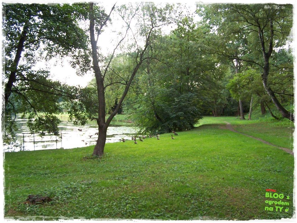 Park Miejski w Nysie zogrodemnaty42