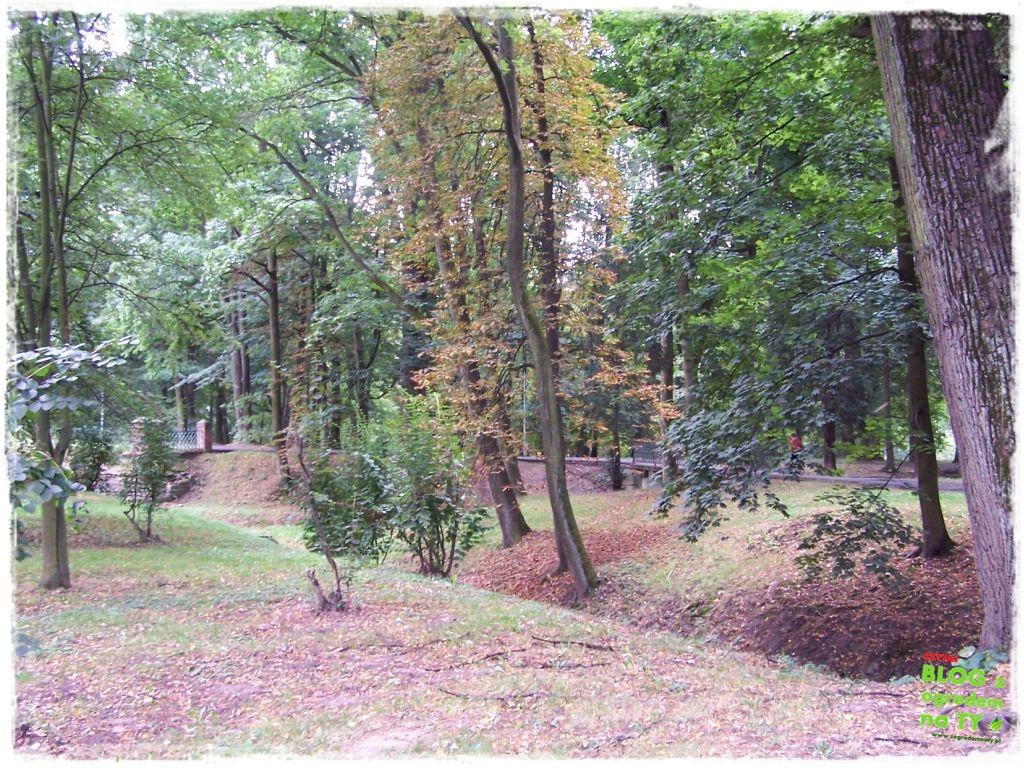 Park Miejski w Nysie zogrodemnaty45