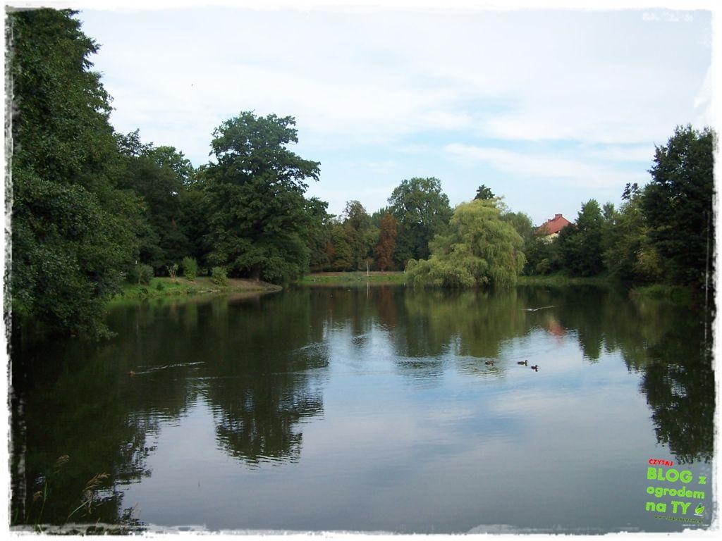 Park Miejski w Nysie zogrodemnaty46