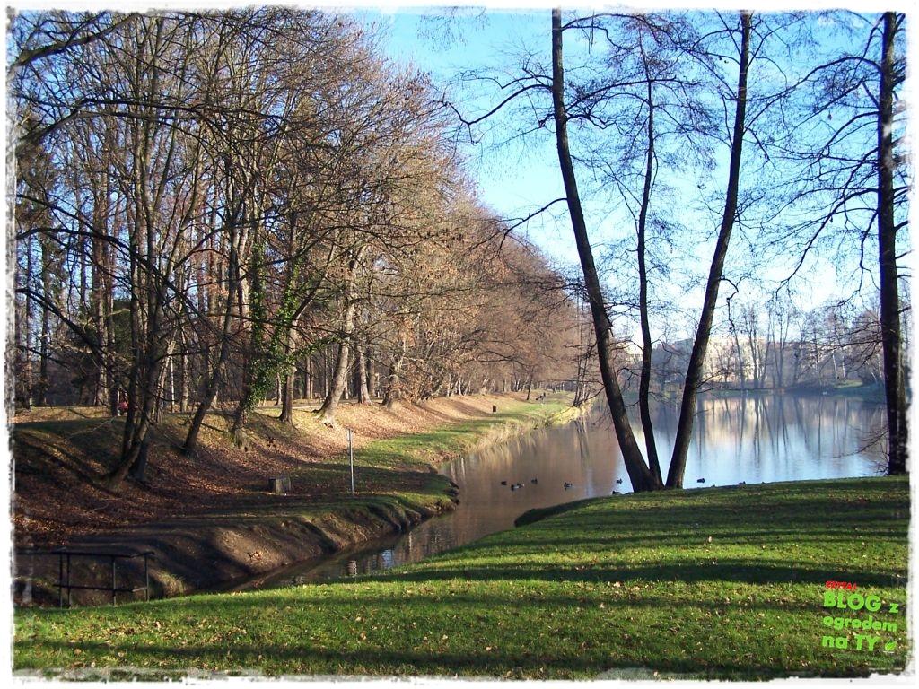 Park Miejski w Nysie zogrodemnaty78