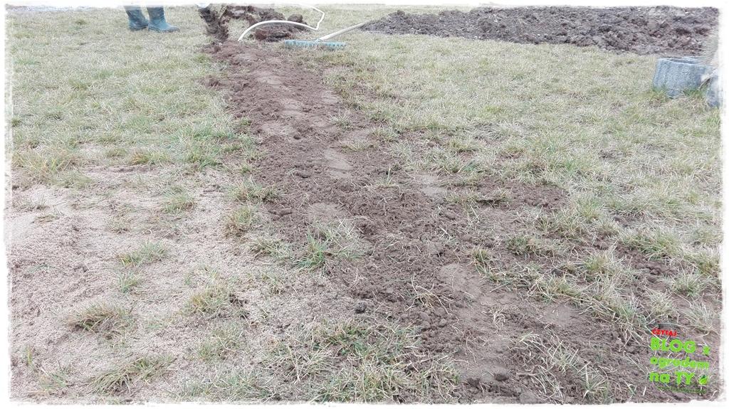 jak urządzić ogród zogrodemnaty21