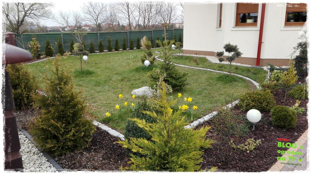 jak urządzić ogród zogrodemnaty81