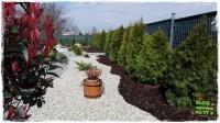 jak urządzić ogród zogrodemnaty41a