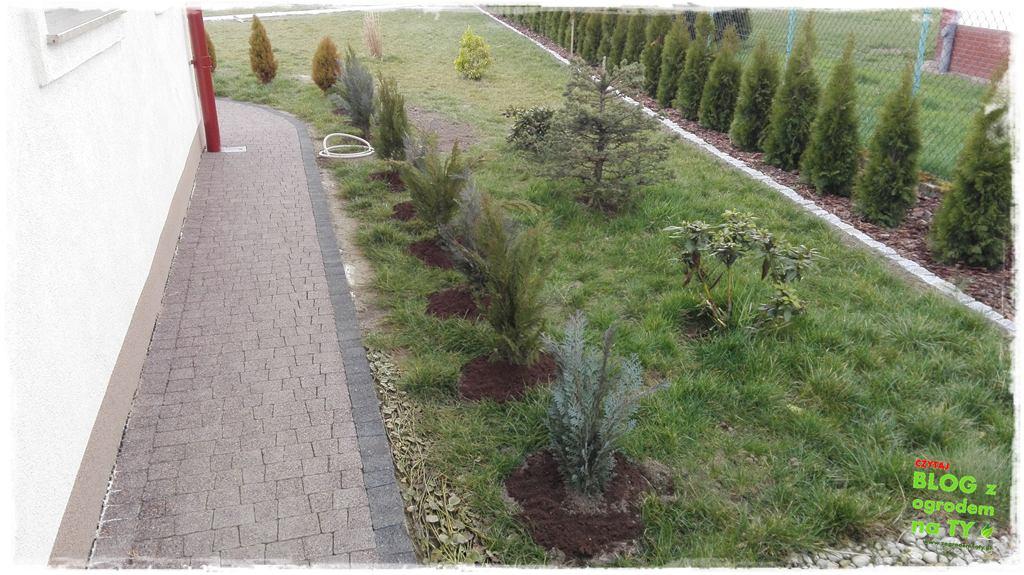 jak urządzić ogród zogrodemnaty45