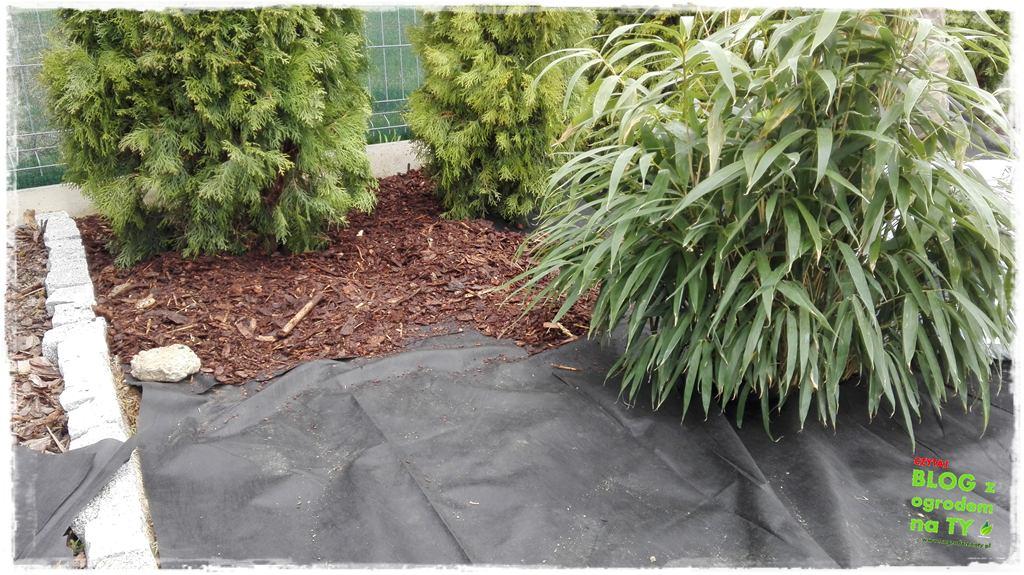 jak urządzić ogród zogrodemnaty62