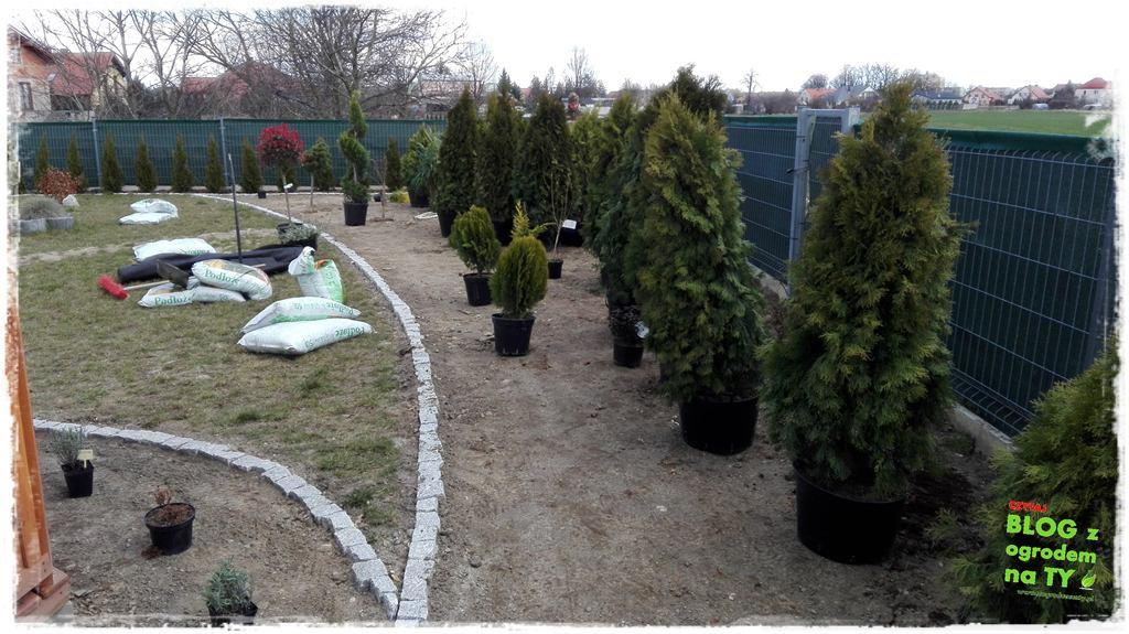 jak urządzić ogród zogrodemnaty50