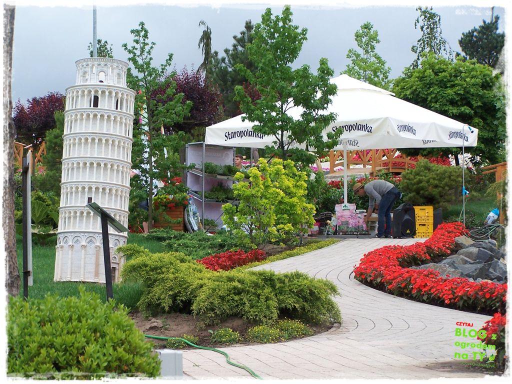 minieuroland festiwal kwiatów zogrodemnaty26