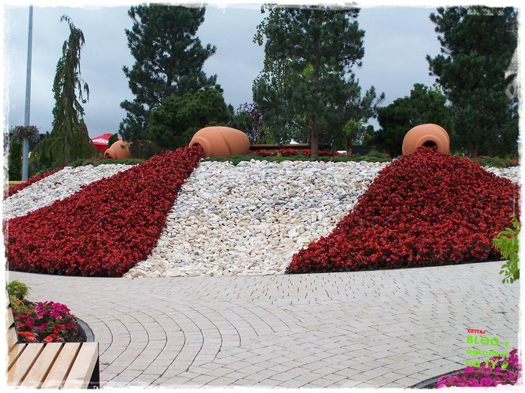 minieuroland festiwal kwiatów zogrodemnaty2