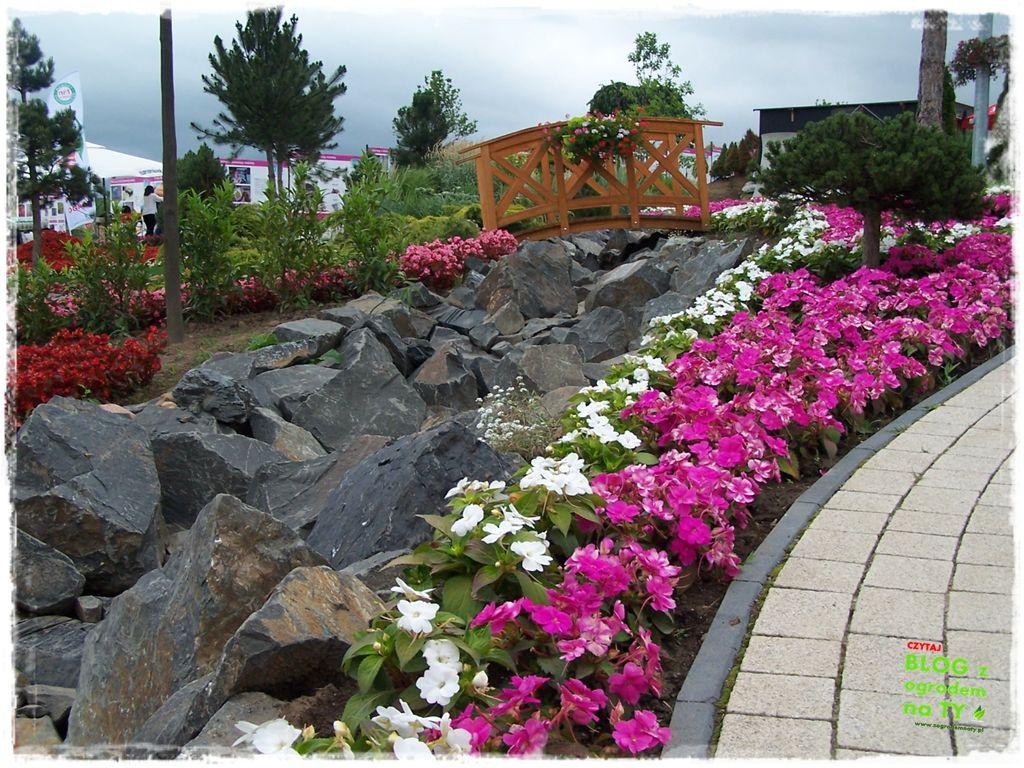 minieuroland festiwal kwiatów zogrodemnaty3