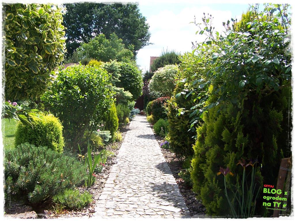 pomysły ogrodowe zogrodemnaty12