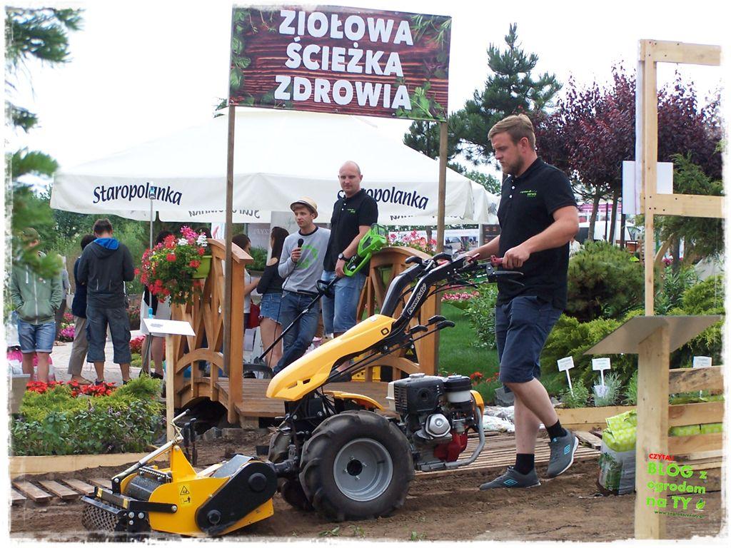minieuroland festiwal kwiatów zogrodemnaty67