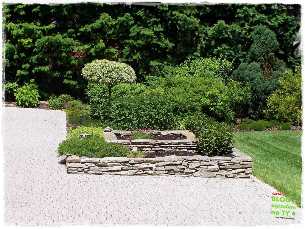 pomysły ogrodowe zogrodemnaty13