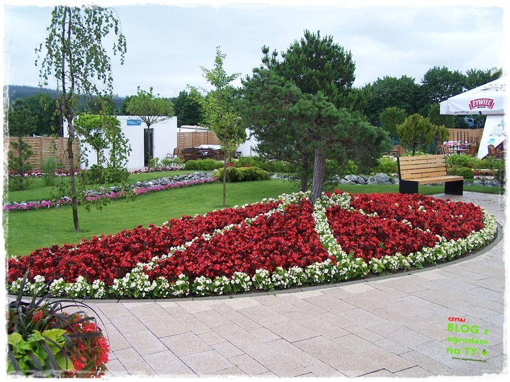 minieuroland festiwal kwiatów zogrodemnaty17
