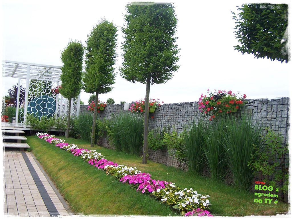 minieuroland festiwal kwiatów zogrodemnaty20