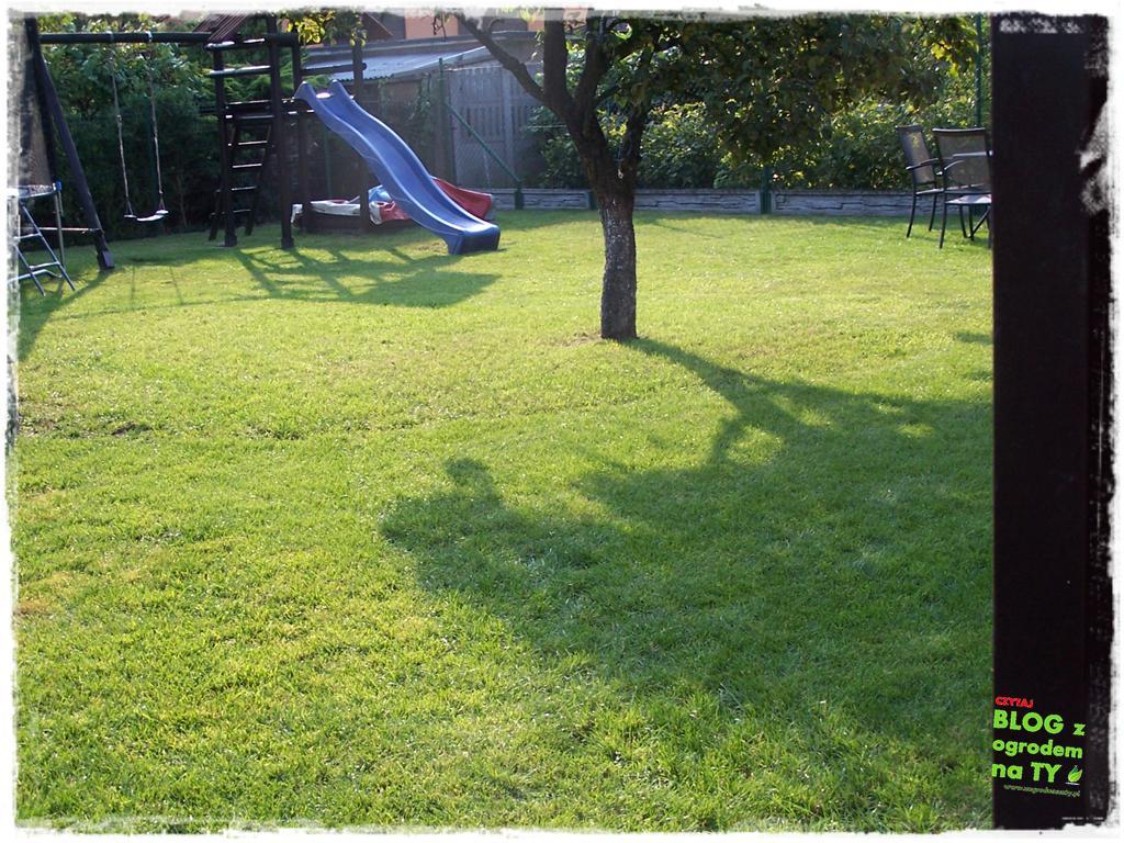 jak kosić trawnik zogrodemnaty14
