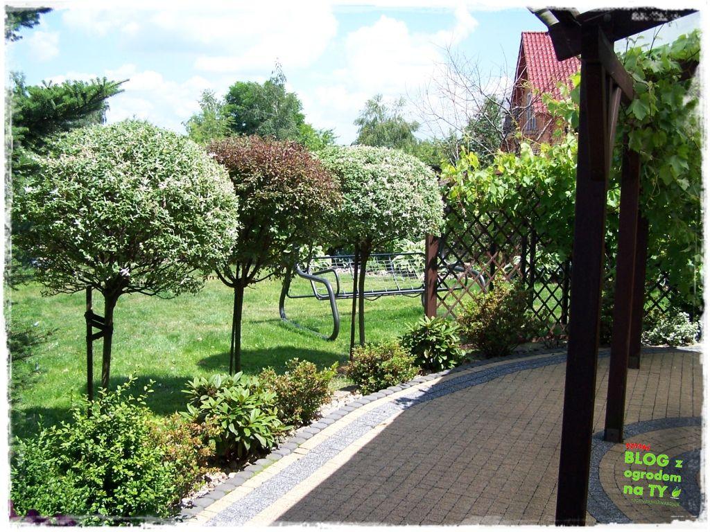 taras w ogrodzie zogrodemnaty11