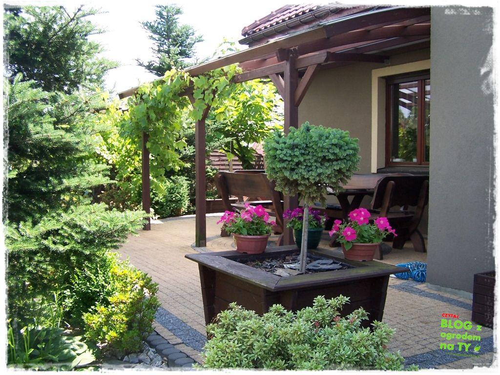 taras w ogrodzie zogrodemnaty2