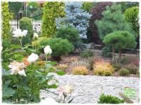Ogród z dużą ilością gatunków zogrodemnaty1