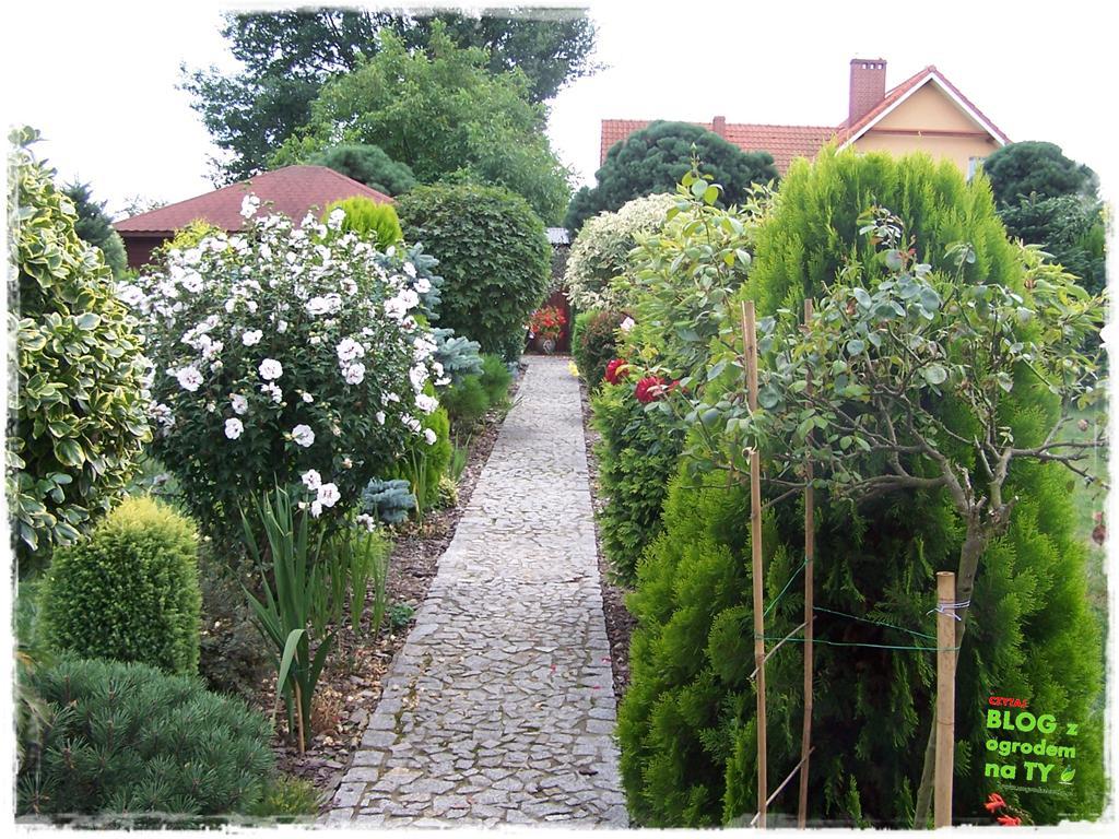 Ogród z dużą ilością gatunków zogrodemnaty8