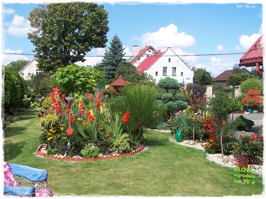 Ogród z dużą ilością gatunków zogrodemnaty37