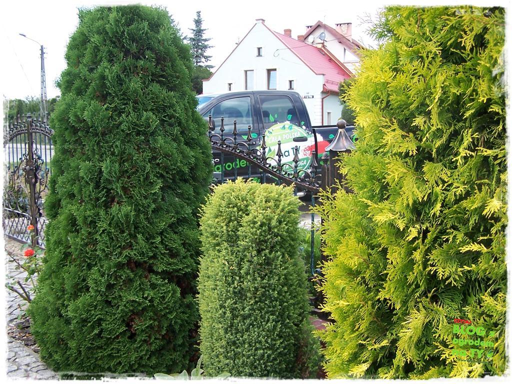Ogród z dużą ilością gatunków zogrodemnaty19