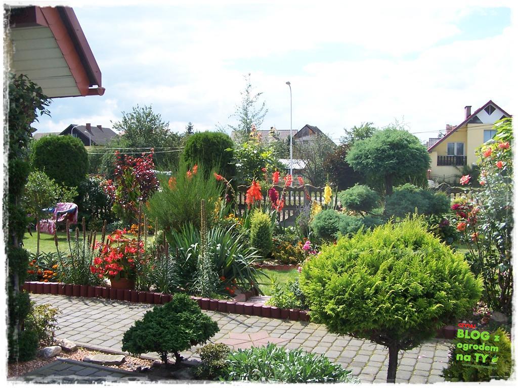 Ogród z dużą ilością gatunków zogrodemnaty33