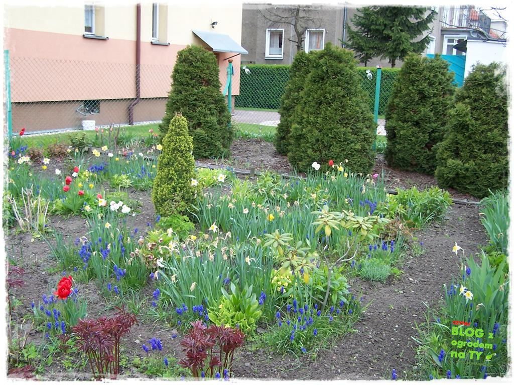 ogród po polsku zogrodemnaty13