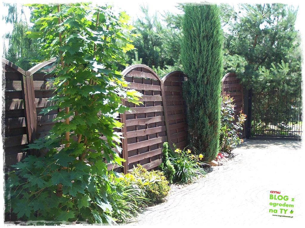 ogród po polsku zogrodemnaty47
