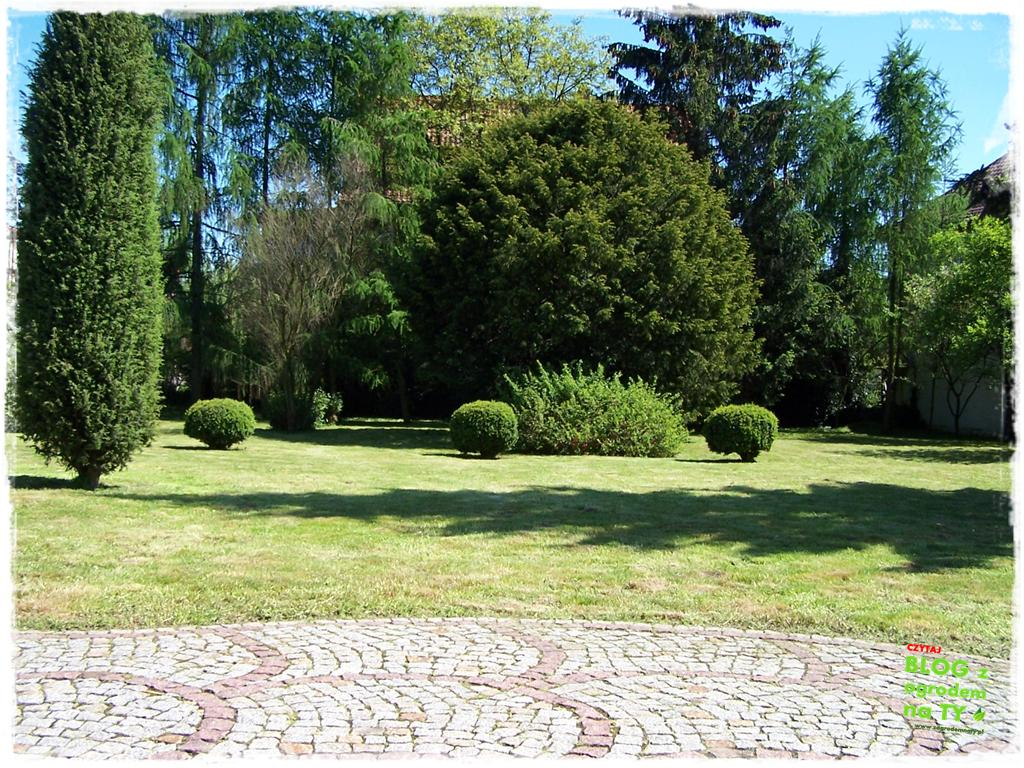 ogród po polsku zogrodemnaty31