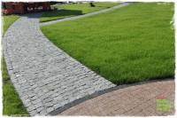 jesienna pielęgnacja trawnika zogrodemnaty1