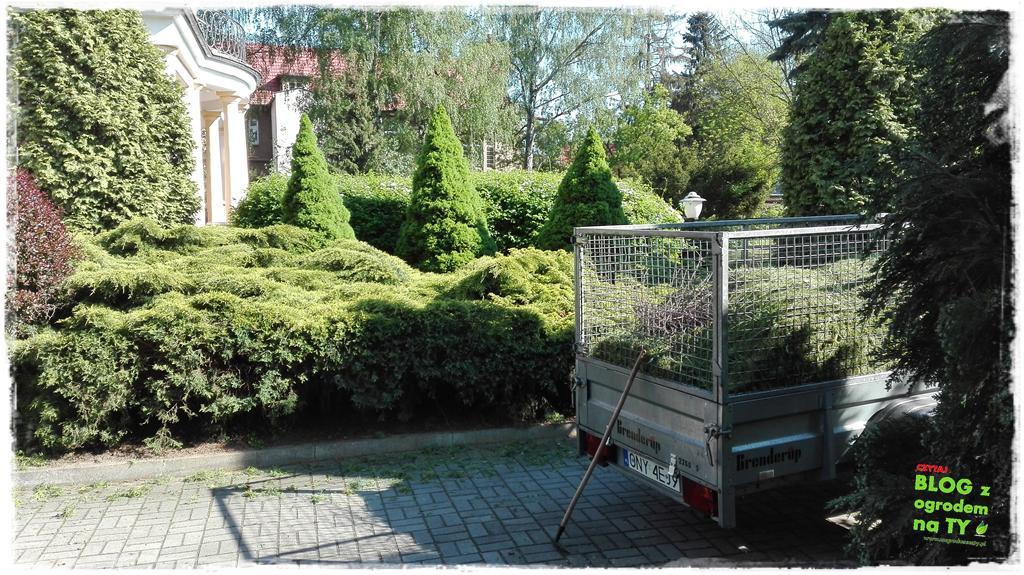 ogród po polsku zogrodemnaty9
