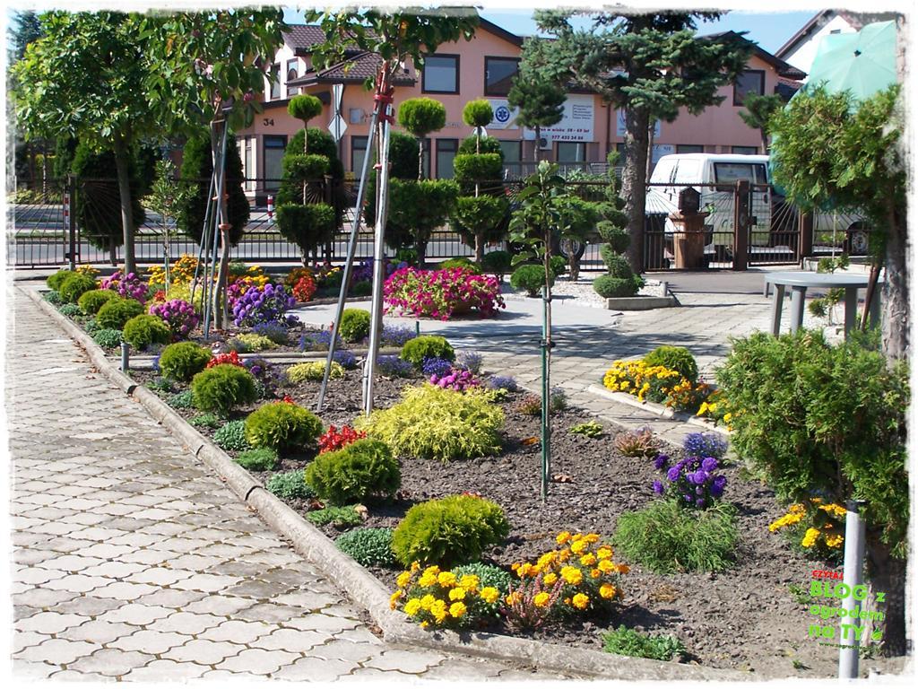 ogród po polsku zogrodemnaty12