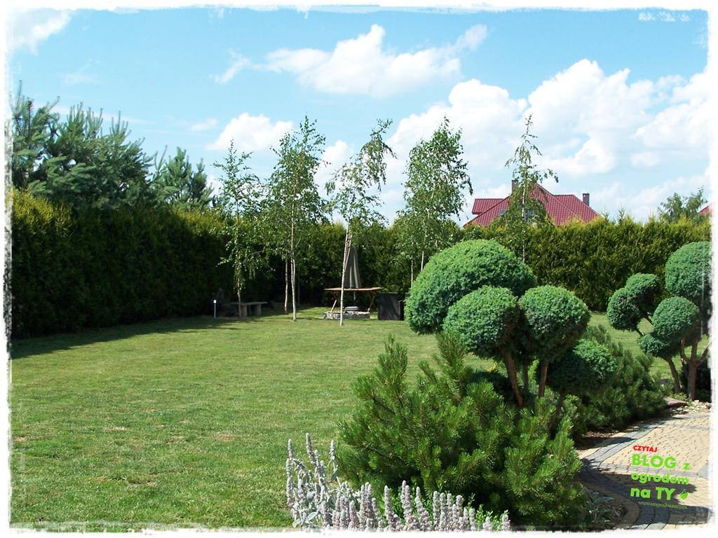 ogród po polsku zogrodemnaty53