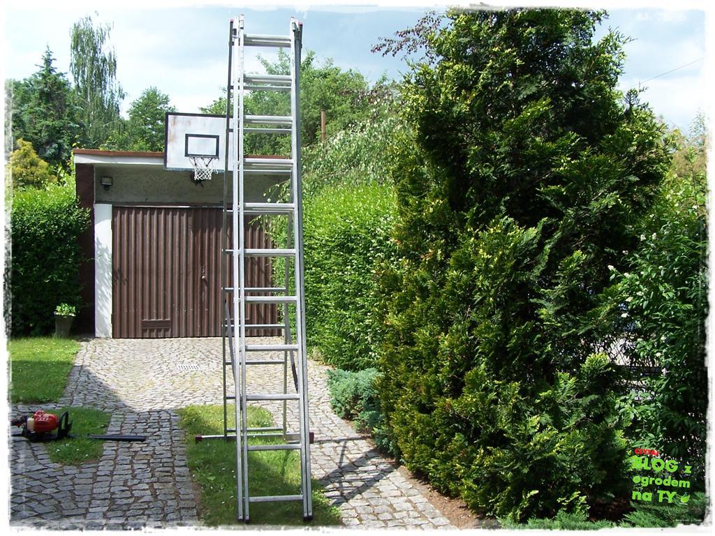 ogród po polsku zogrodemnaty23