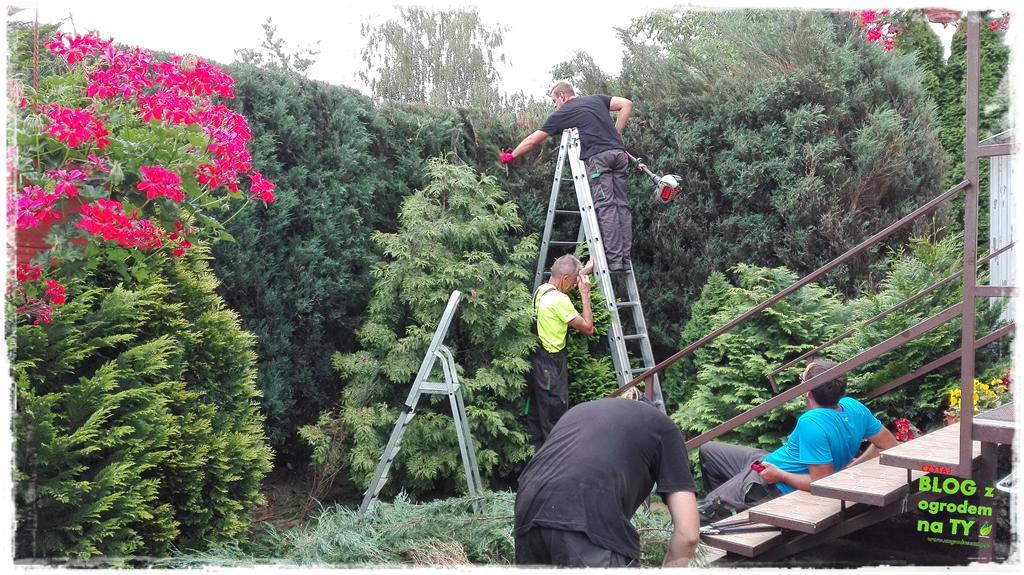ogród po polsku zogrodemnaty22