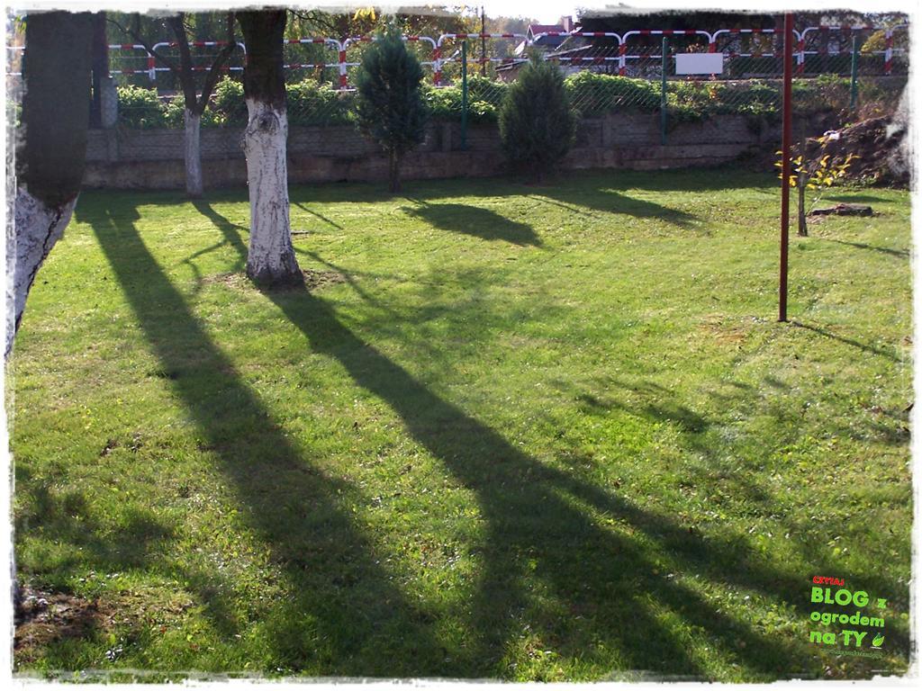 Jak przygotować ogród do zimy zogrodemnaty3