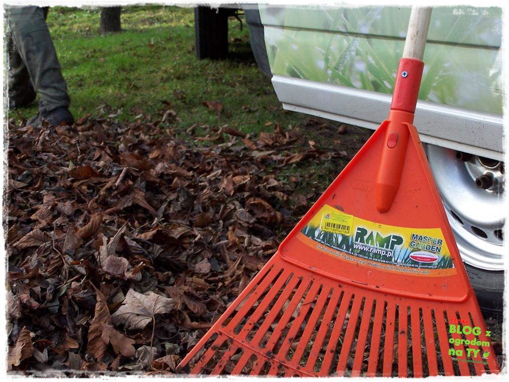 Jak przygotować ogród do zimy zogrodemnaty21