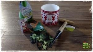 Jak przygotować ogród do zimy zogrodemnaty25