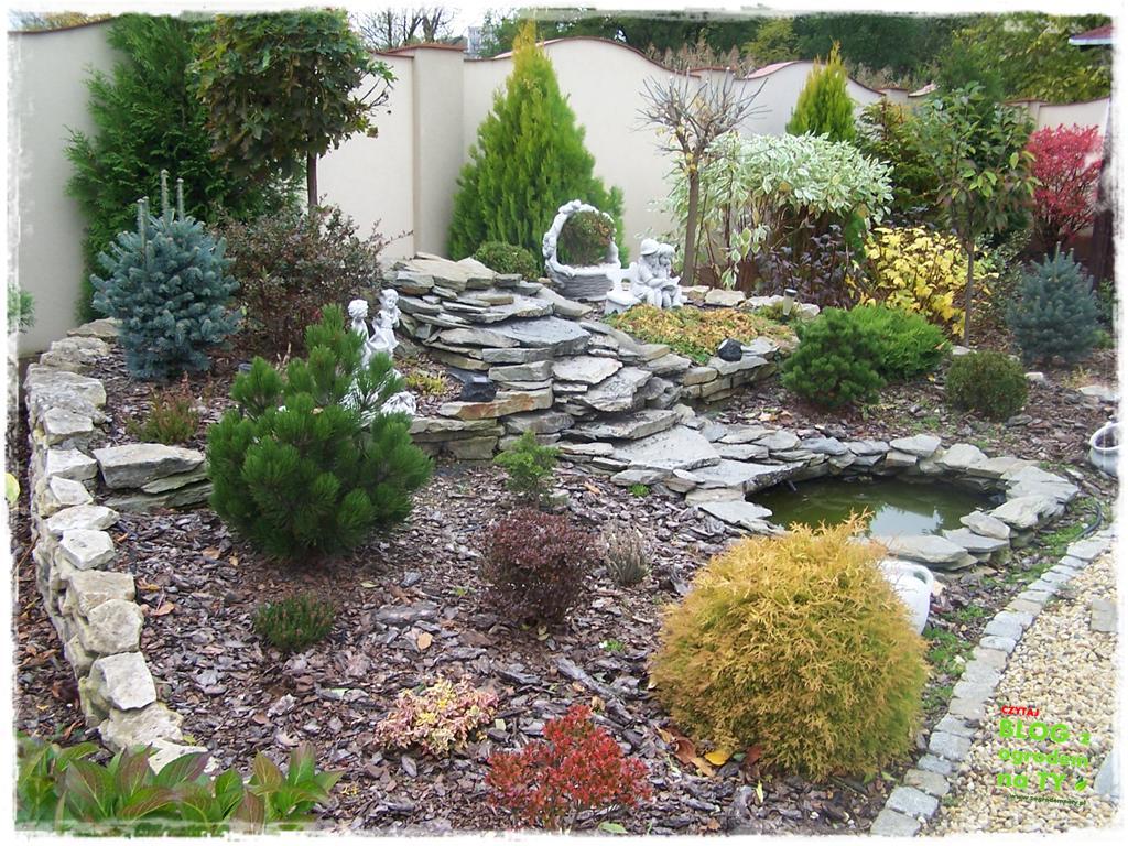 Jak przygotować ogród do zimy zogrodemnaty18