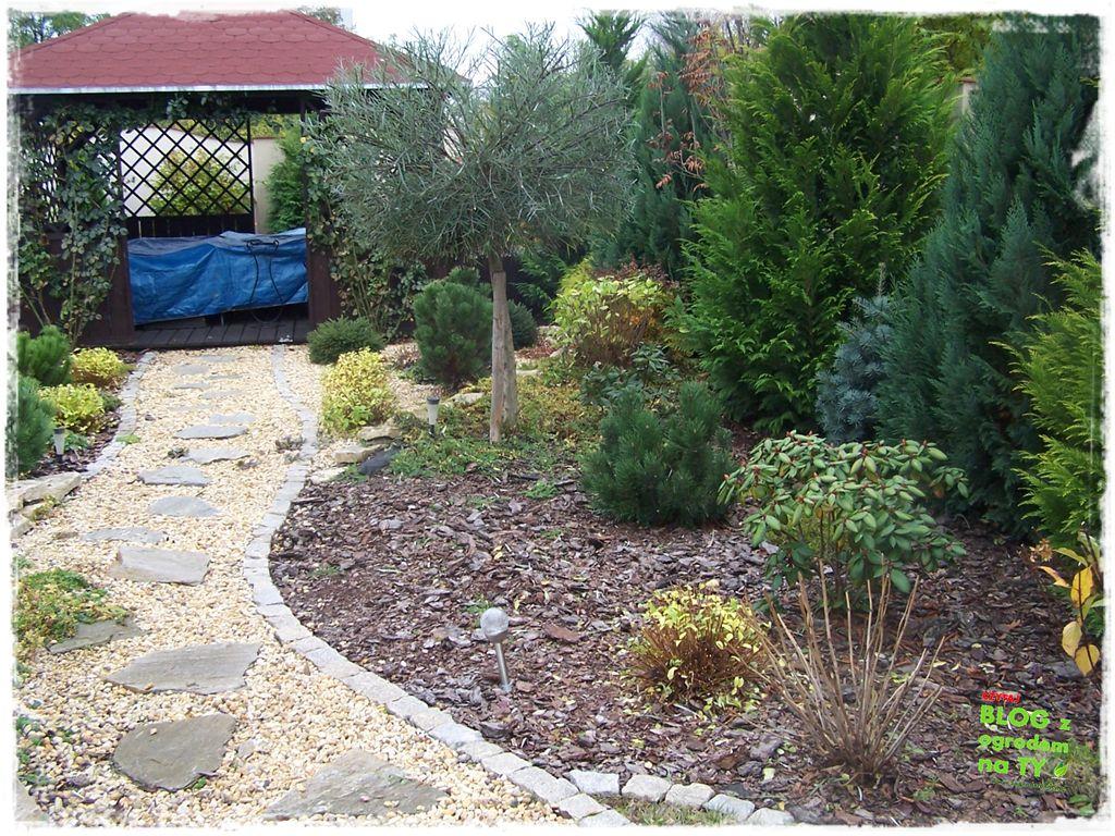 Jak przygotować ogród do zimy zogrodemnaty16