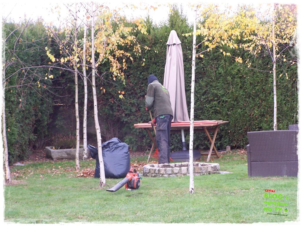 Jak przygotować ogród do zimy zogrodemnaty4