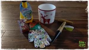 Jak przygotować ogród do zimy zogrodemnaty26