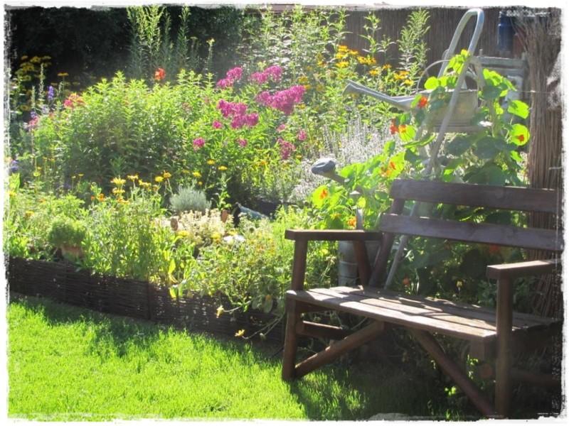 zioła w ogrodzie zogrodemnaty12