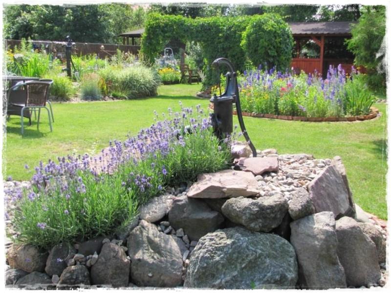 zioła w ogrodzie zogrodemnaty5