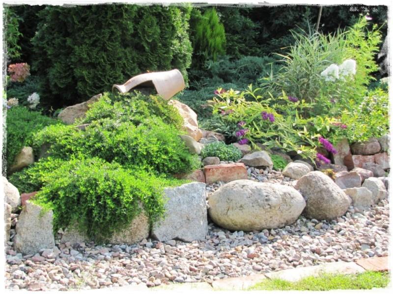 zioła w ogrodzie zogrodemnaty16